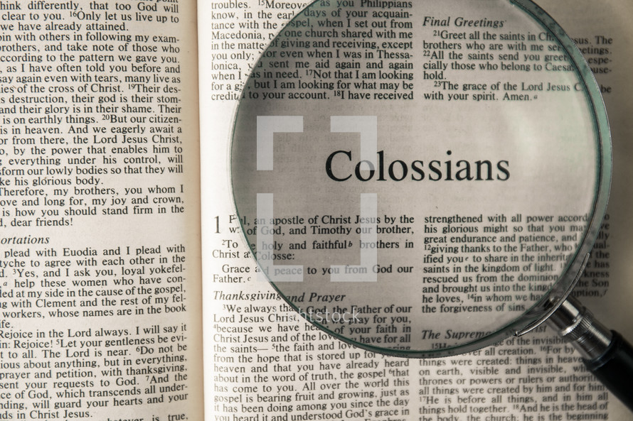 Colossians under a magnifying glass
