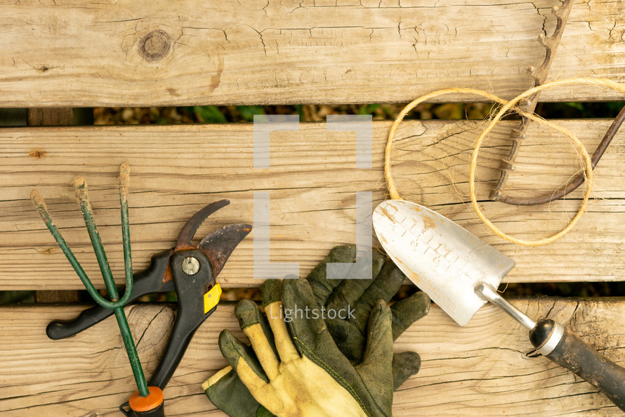 gardening tools on a wood background