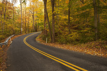 a curve on a road in fall