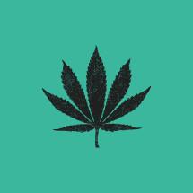 Marijuana leaf