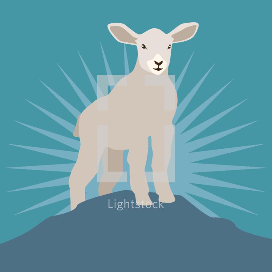 lamb on a mount