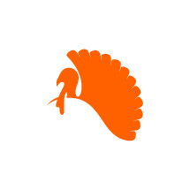 orange turkey icon