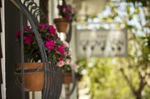 ceramic planter pot and flowers