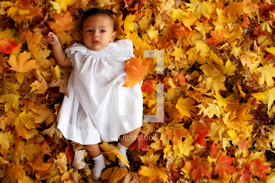 infant girl lying in a pile of leaves