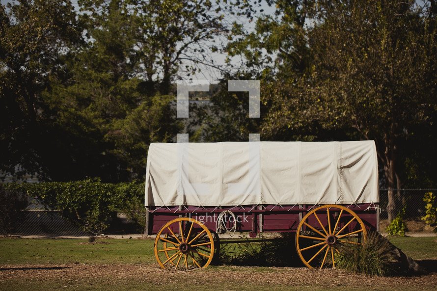 Covered wagon in park.