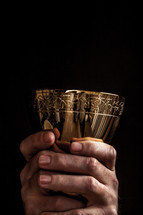 priest holding up the Chalice