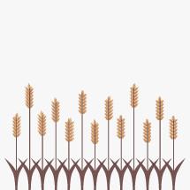 wheat harvest border