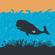 Bible Story of Jonah in the belly of the big fish