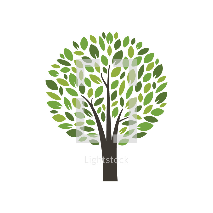 tree with leaves illustration