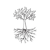 hand drawn tree and roots illustration.