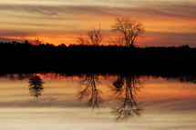 reflection of winter trees in pond water at sunset