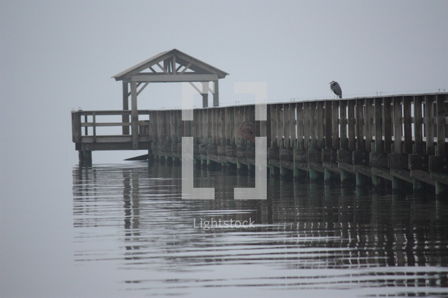 Bird sitting on a pier on the water at dusk.