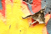 peeling paint of a wall covered in graffiti