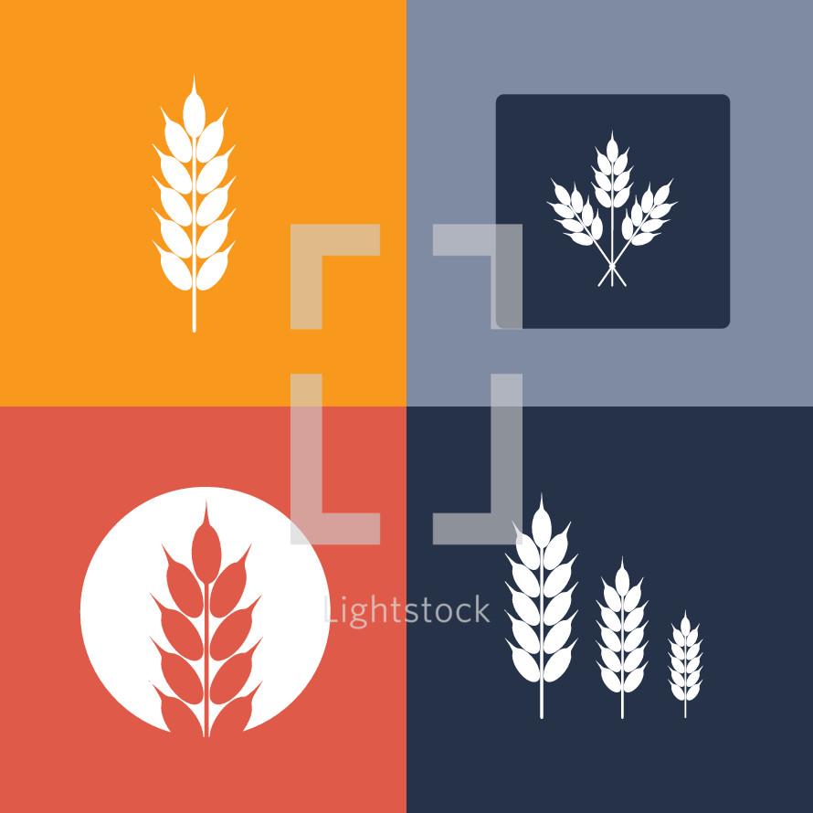 solo wheat icon