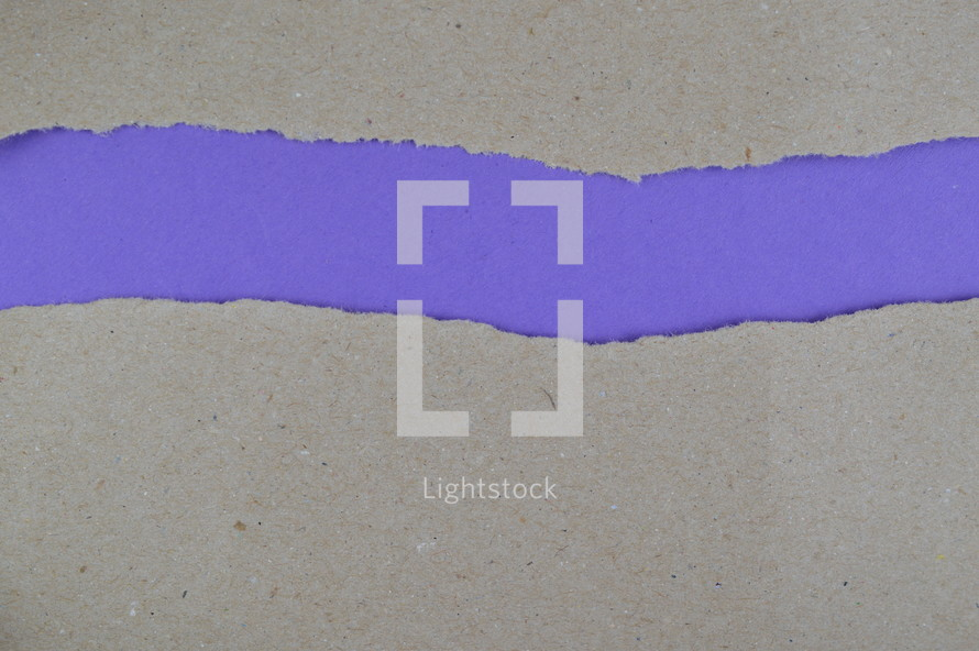 purple under gray torn paper