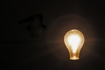 Light bulb illumination -  Inspiration, idea, brain wave