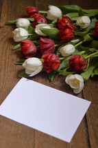 red and white tulips and a blank piece of paper