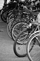 lots of bicycles, 