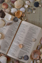 seashells and open Bible on mat