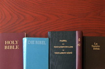 Bibles in different language lined up on a table.