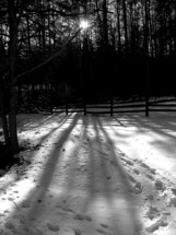 The sun shining through the trees leaving long shadows on the snow through a trail of tracks in the snow in Virginia during the winter.