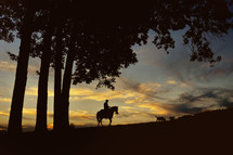 Man riding horse at sunset