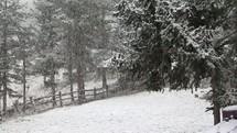 falling winter snow