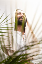 Jesus and palm fronds