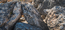 a cat peeking through rocks