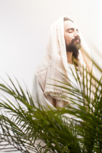 Jesus in palm fronds