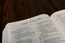 Scripture Titles - The Psalms