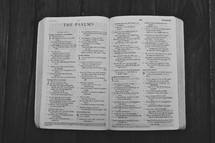 Open Bible in book of Psalms