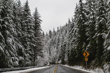 a dusting of snow on pine trees along a highway
