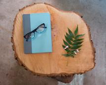 book, reading glasses, fern, twig, log, cut wood, tree rings, stump, reading