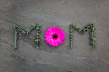 word mom in eucalyptus leaves and flower
