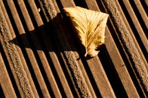 leaf on a deck