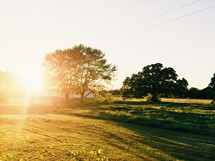 Bright sunshine on a country landscape.