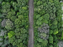 aerial view over train tracks through a forest