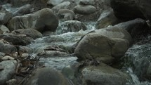water flowing over rocks in a brook