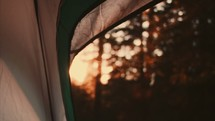 Inside of tent looking out at  dawn: Camp Shoot - 2 of 4