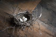 stones in a bird's nest