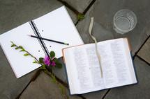 glass of water, journal, open Bible, twig, and azalea