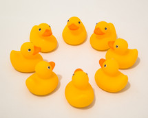 rubber duckies in a circle