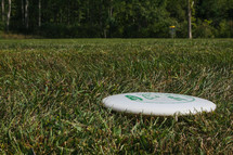 disc golf disc in grass