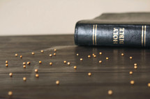 Holy Bible spine and mustard seed
