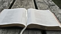 open Bible on a wood picnic bench