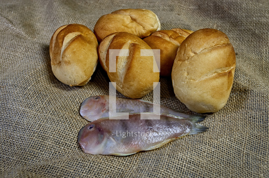 loaves of bread and fish