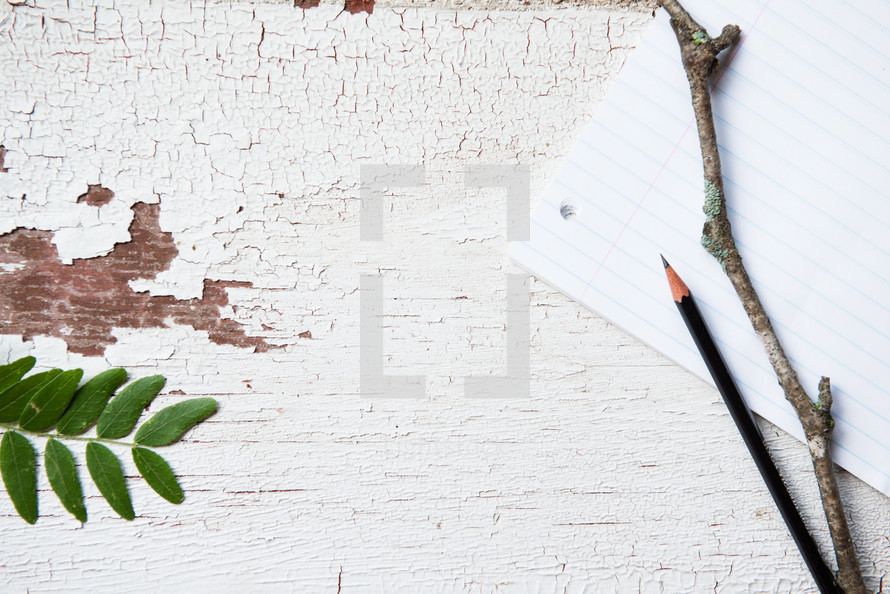 twig, pencil, stick, notebook paper, white background