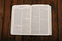 Scripture Titles :: Joshua; open bible on table