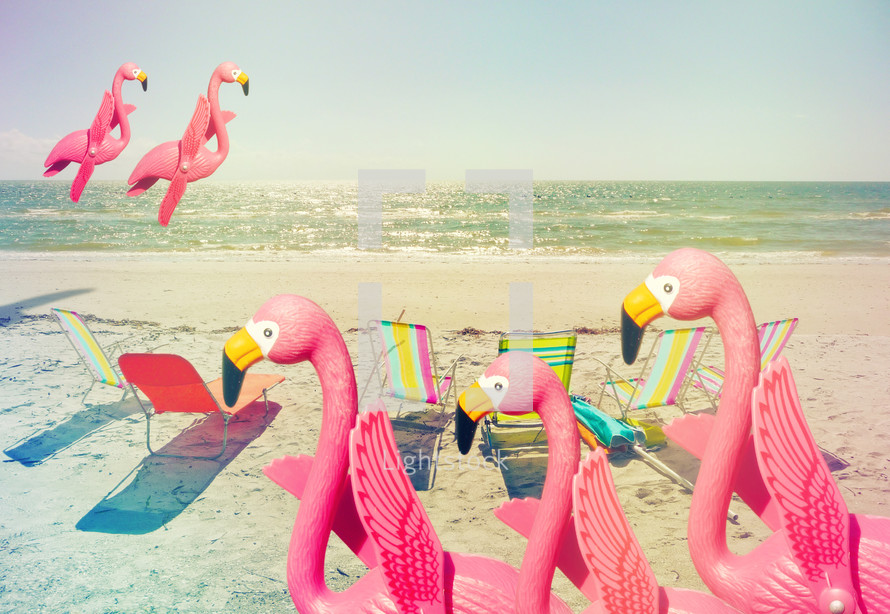 flamingos and lounge chairs on a beach